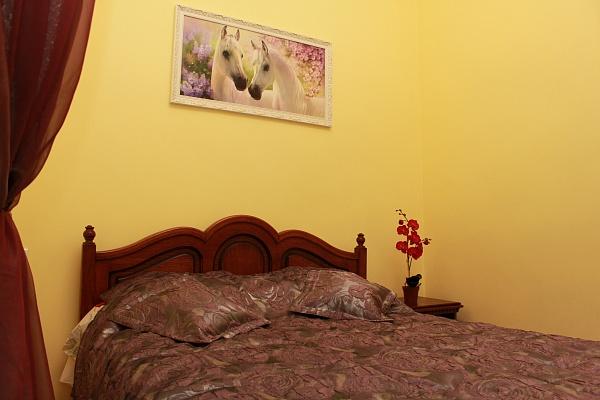 1-комнатная квартира посуточно в Львове. Галицкий район, ул. Ставропигийськая, 4. Фото 1