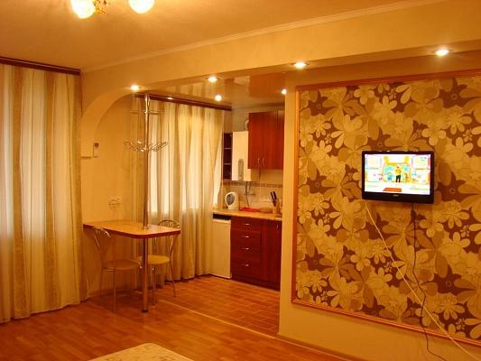 1-комнатная квартира посуточно в Днепропетровске. Красногвардейский район, ул. Титова, 22а. Фото 1
