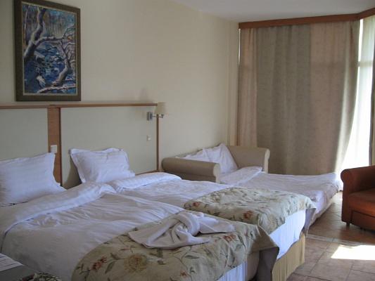 1-комнатная квартира посуточно в Николаеве. Заводской район, садовая, 24. Фото 1