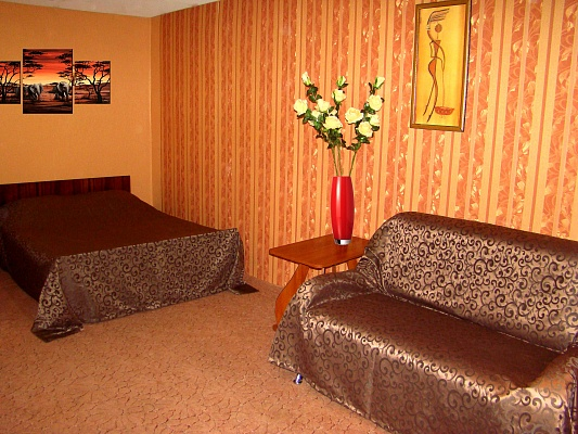 1-комнатная квартира посуточно в Херсоне. Днепровский район, ул. Заменгофа (Благоева), 1. Фото 1