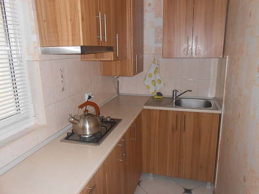 1-комнатная квартира посуточно в Трускавце. шевченка , 27. Фото 1