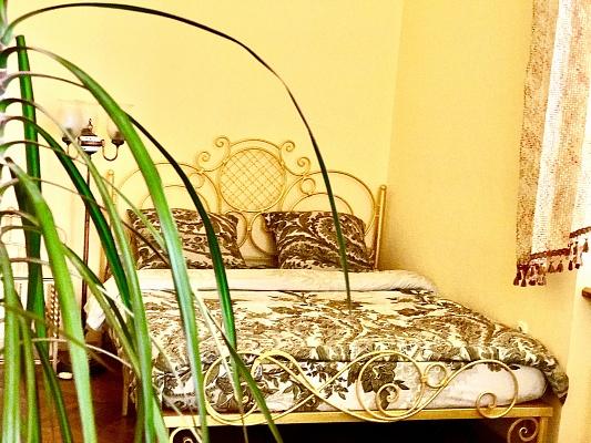 1-комнатная квартира посуточно в Львове. Шевченковский район, ул. Леонтовича, 9. Фото 1