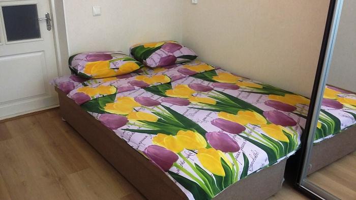 1-комнатная квартира посуточно в Одессе. Малиновский район, ул. Разумовская, 49. Фото 1