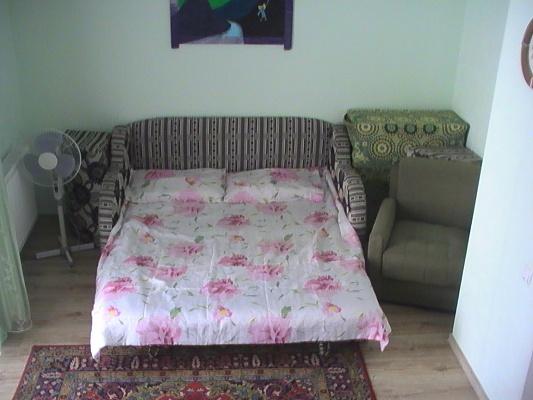 1-комнатная квартира посуточно в Ивано-Франковске. ул. Черновола, 67. Фото 1