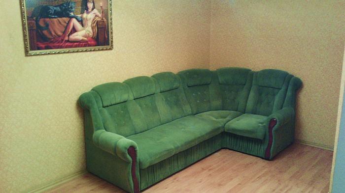 1-комнатная квартира посуточно в Горловке. ул. Пушкинская, 29. Фото 1