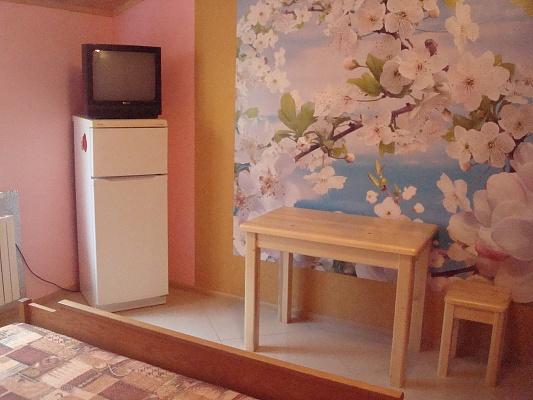 1-комнатная квартира посуточно в Моршине. ул. И. Франко, 58. Фото 1