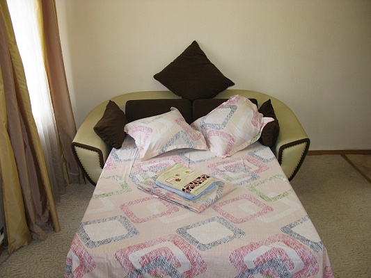 1-комнатная квартира посуточно в Киеве. ул. Большая Васильковская, 114. Фото 1