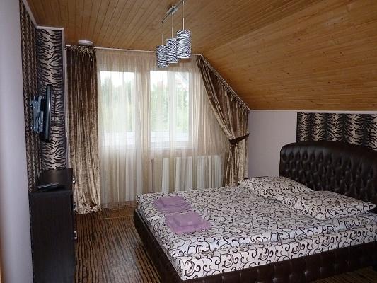 2-комнатная квартира посуточно в Ужгороде. ул. Ирены Невицкой. Фото 1