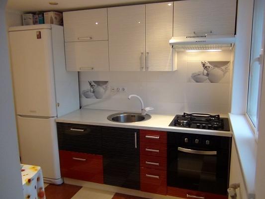 1-комнатная квартира посуточно в Борисполе. ул. Мичурина, 2. Фото 1