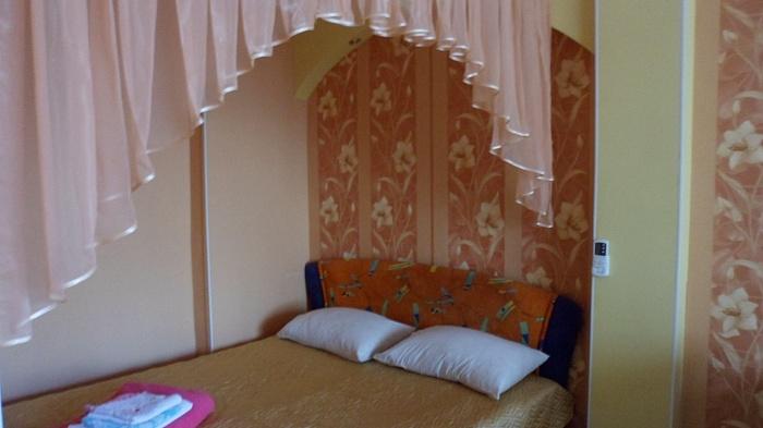 1-комнатная квартира посуточно в Новомосковске. пл. Героев (Ленина), 16. Фото 1