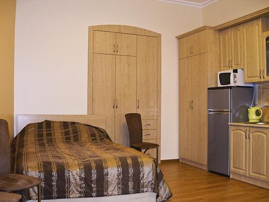 1-комнатная квартира посуточно в Львове. Галицкий район, ул. И. Франка, 92. Фото 1